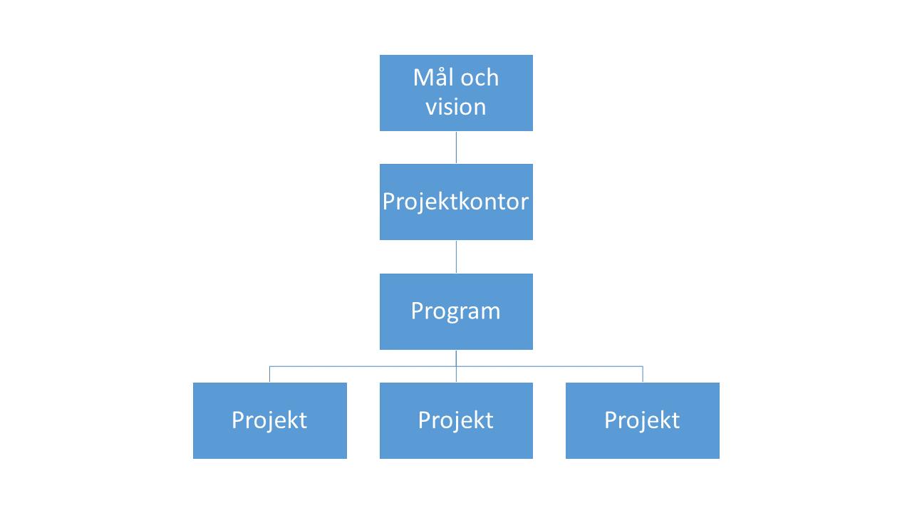 Effekten för projektkontoret ligger i mål och vision för hela organisationen.