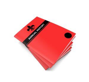 Annual Report Book Brochure  - TheDigitalArtist / Pixabay